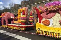 20160424-Bloemencorso-Haarlem-(7)